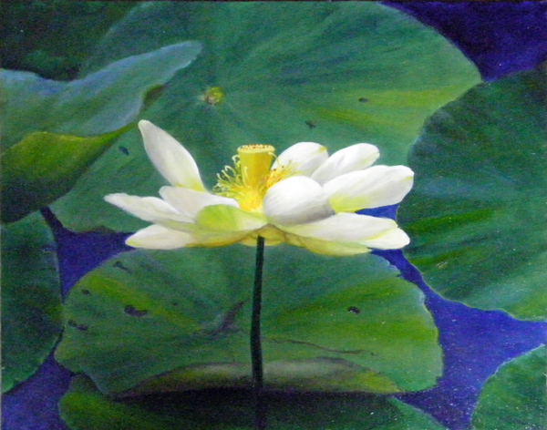 Painting of a lotus by Lynnette Horn